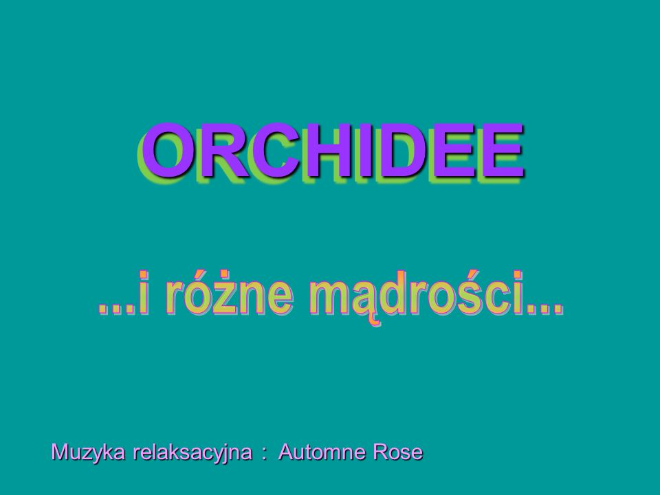 ORCHIDEE ...i różne mądrości... Muzyka relaksacyjna : Automne Rose
