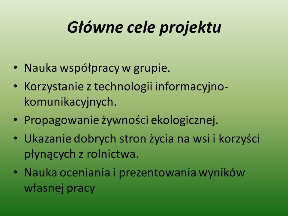 Główne cele projektu Nauka współpracy w grupie.