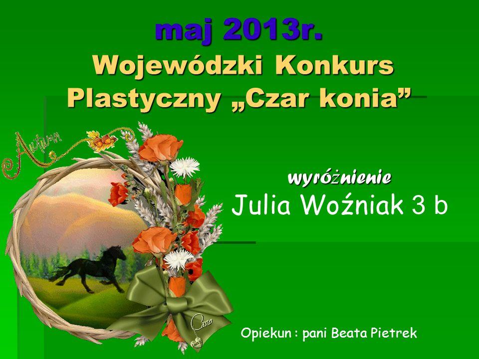 """maj 2013r. Wojewódzki Konkurs Plastyczny """"Czar konia"""