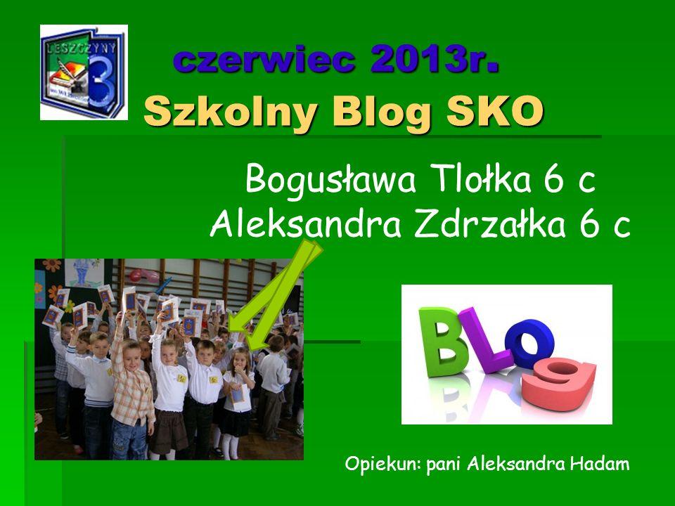 czerwiec 2013r. Szkolny Blog SKO