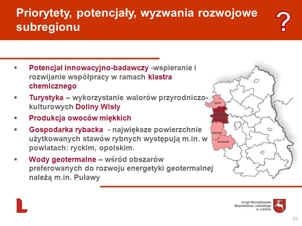 Priorytety, potencjały, wyzwania rozwojowe subregionu