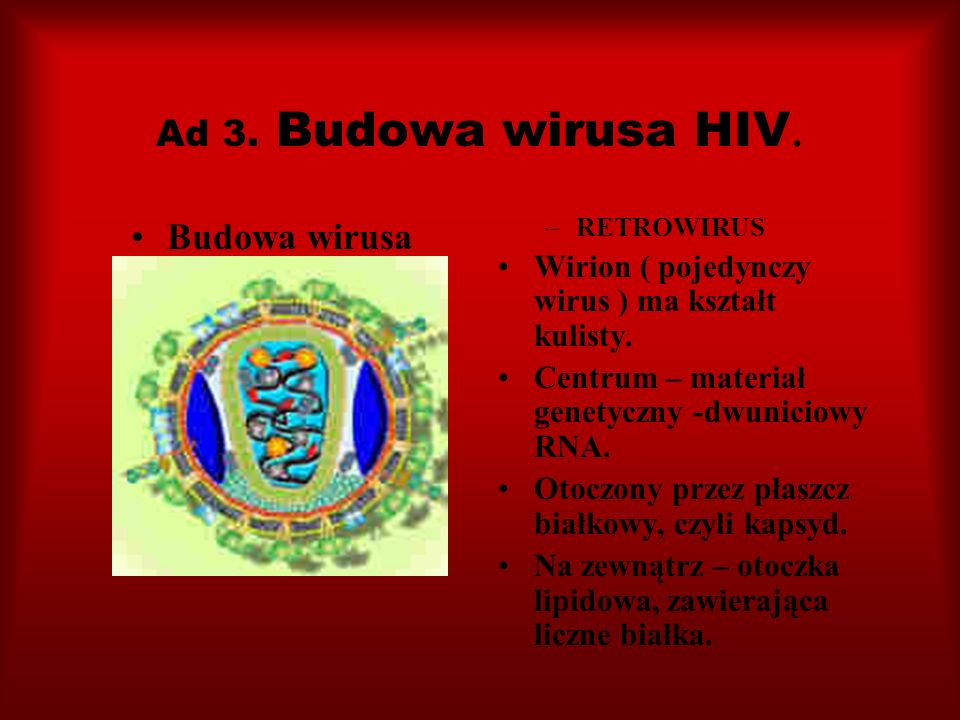 Ad 3. Budowa wirusa HIV. Budowa wirusa