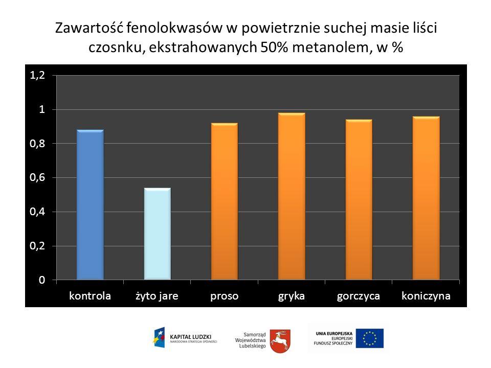 Zawartość fenolokwasów w powietrznie suchej masie liści czosnku, ekstrahowanych 50% metanolem, w %