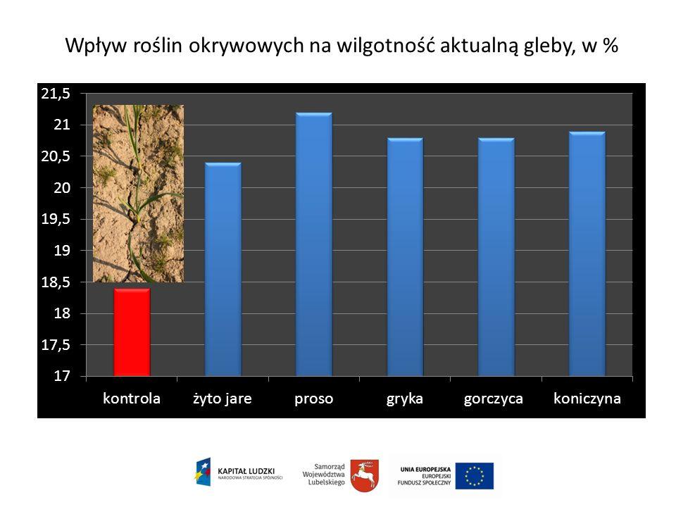 Wpływ roślin okrywowych na wilgotność aktualną gleby, w %