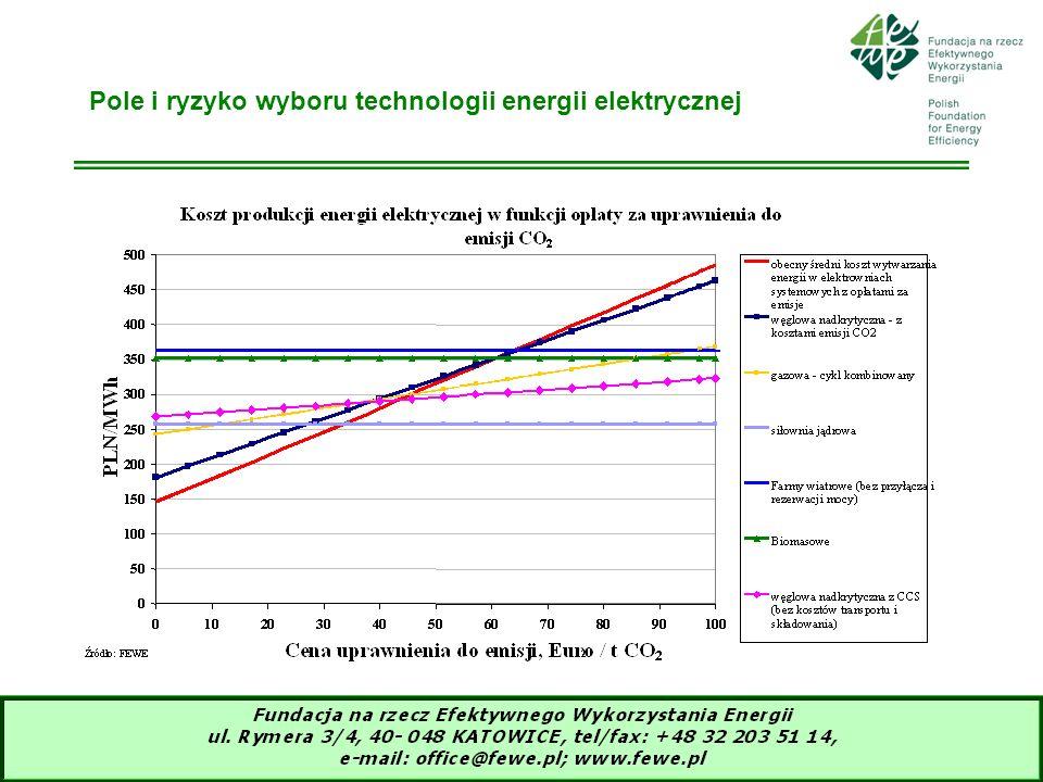 Pole i ryzyko wyboru technologii energii elektrycznej