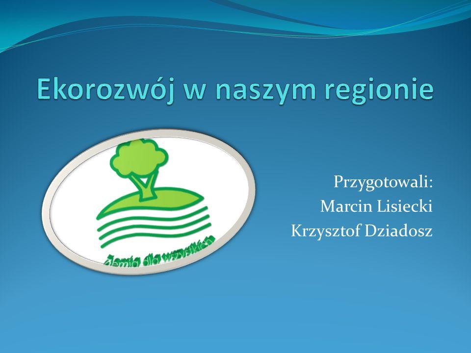 Ekorozwój w naszym regionie