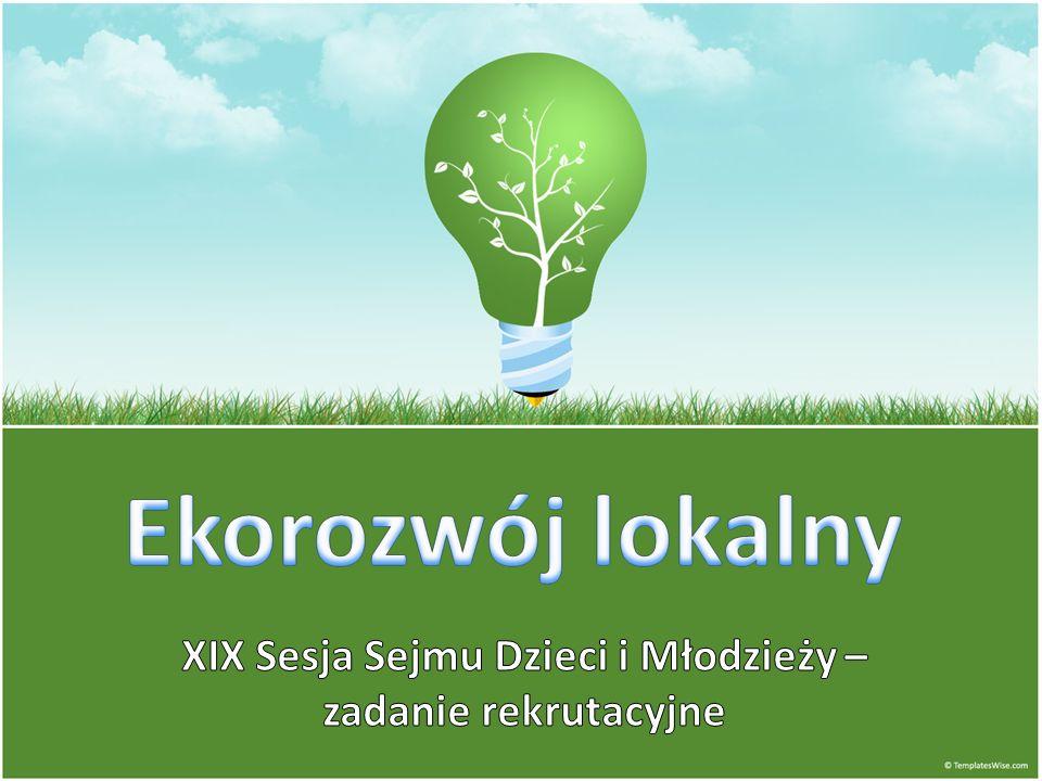 XIX Sesja Sejmu Dzieci i Młodzieży – zadanie rekrutacyjne