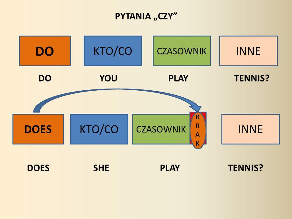 """DO KTO/CO INNE DOES KTO/CO INNE PYTANIA """"CZY CZASOWNIK"""