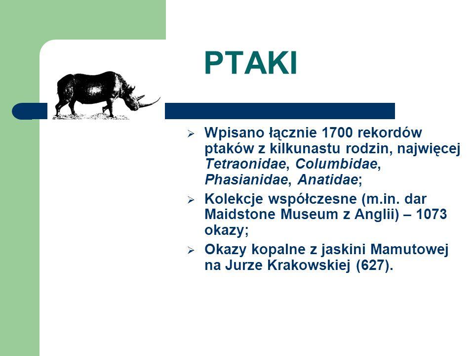 PTAKI Wpisano łącznie 1700 rekordów ptaków z kilkunastu rodzin, najwięcej Tetraonidae, Columbidae, Phasianidae, Anatidae;
