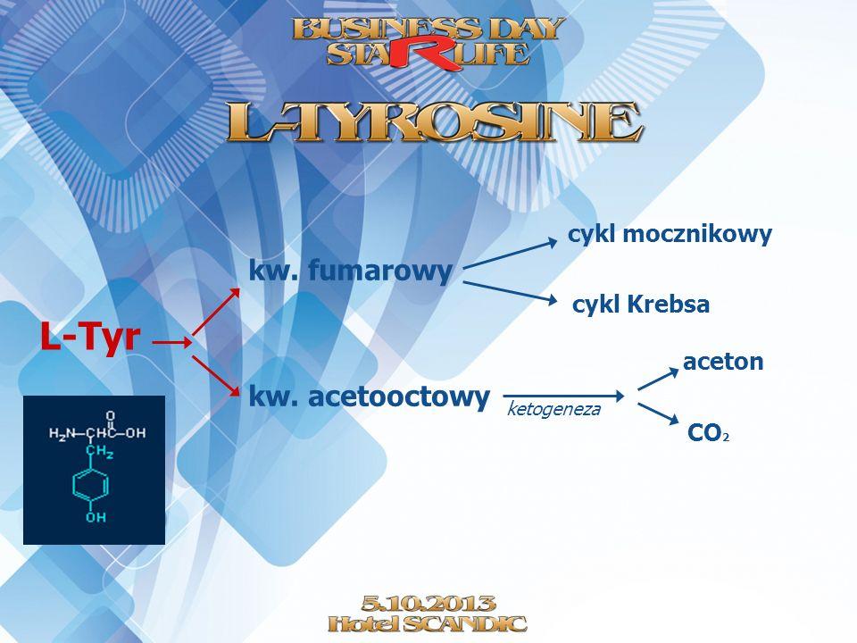 L-Tyr kw. fumarowy kw. acetooctowy cykl mocznikowy cykl Krebsa aceton