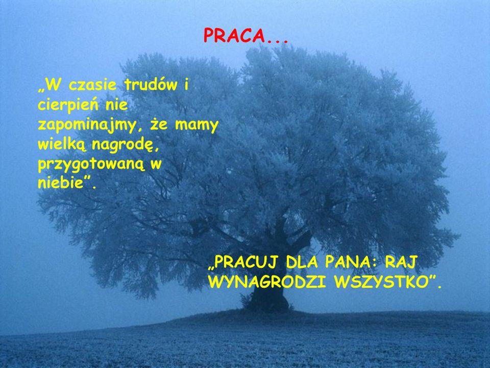 """PRACA... """"W czasie trudów i cierpień nie zapominajmy, że mamy wielką nagrodę, przygotowaną w niebie ."""
