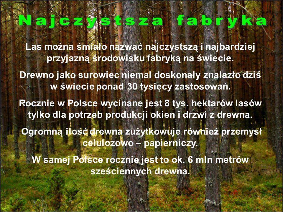 W samej Polsce rocznie jest to ok. 6 mln metrów sześciennych drewna.
