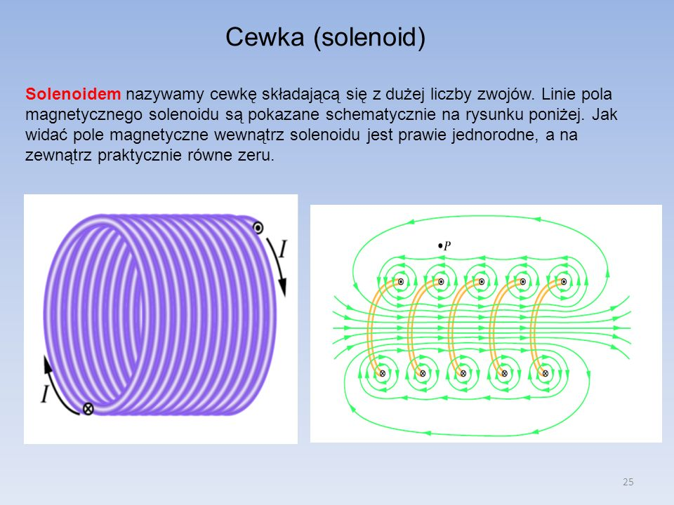 Cewka (solenoid)