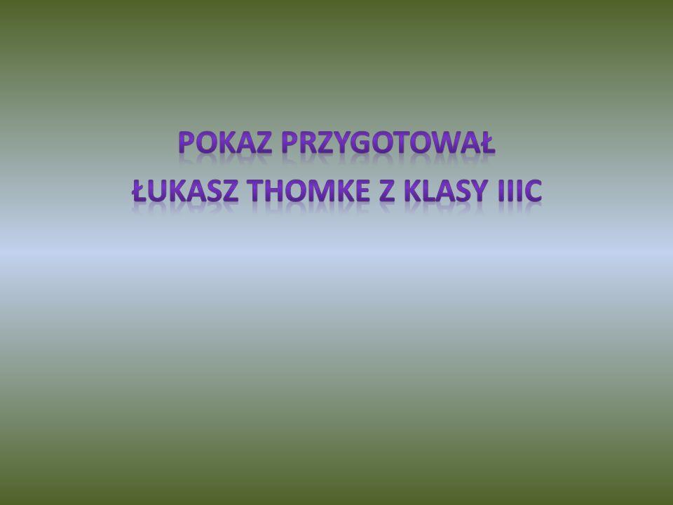 Pokaz przygotował Łukasz Thomke z klasy IIIc