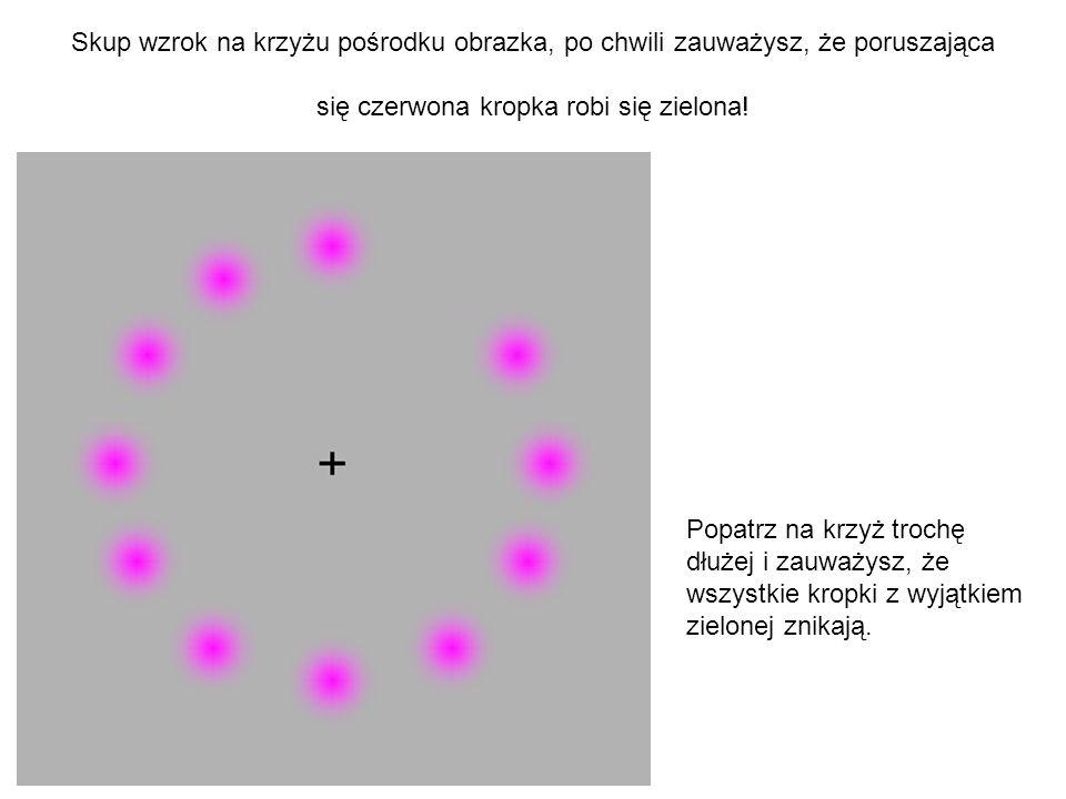 Skup wzrok na krzyżu pośrodku obrazka, po chwili zauważysz, że poruszająca się czerwona kropka robi się zielona!