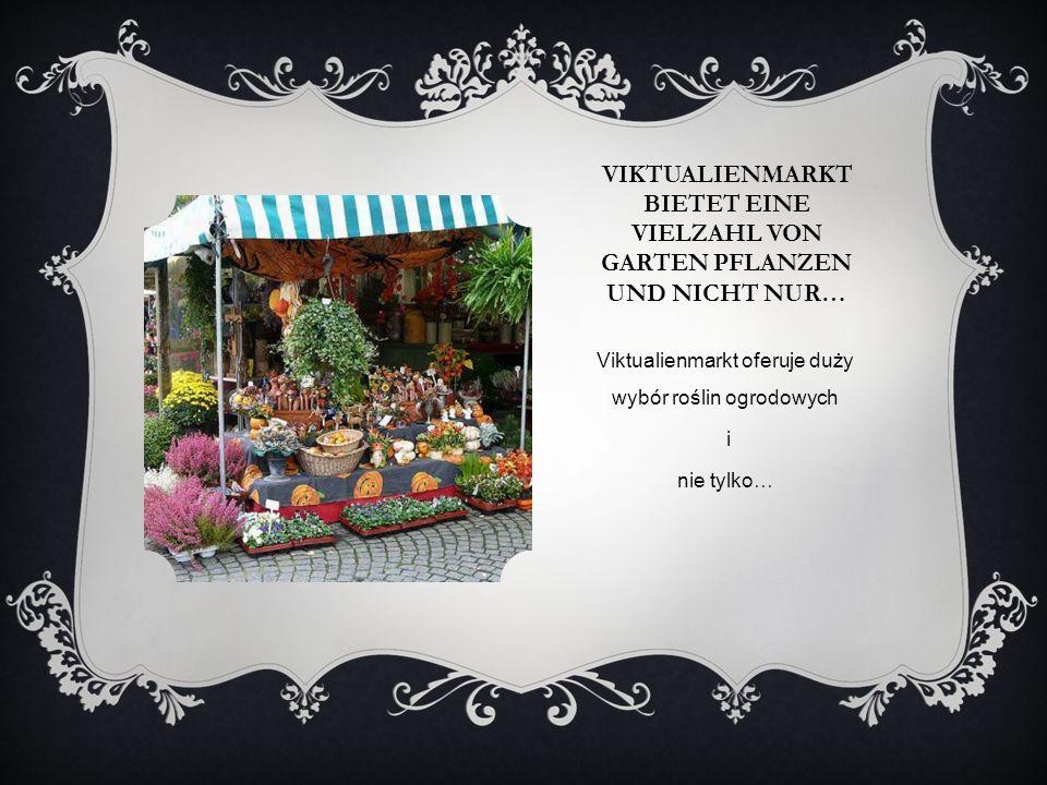 Viktualienmarkt oferuje duży wybór roślin ogrodowych