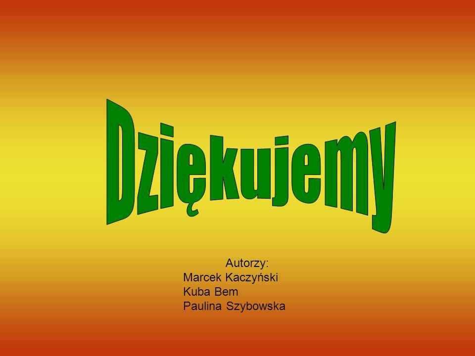 Dziękujemy Autorzy: Marcek Kaczyński Kuba Bem Paulina Szybowska