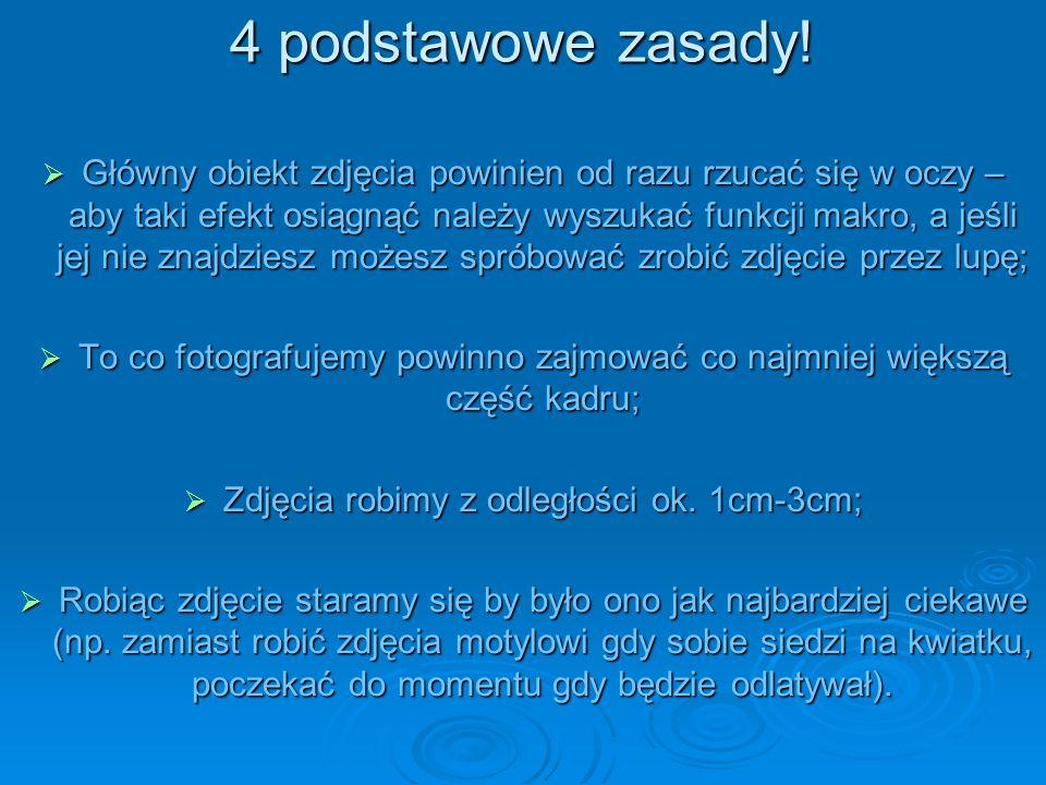 4 podstawowe zasady!