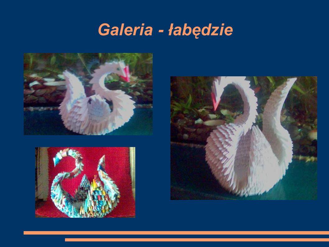 Galeria - łabędzie
