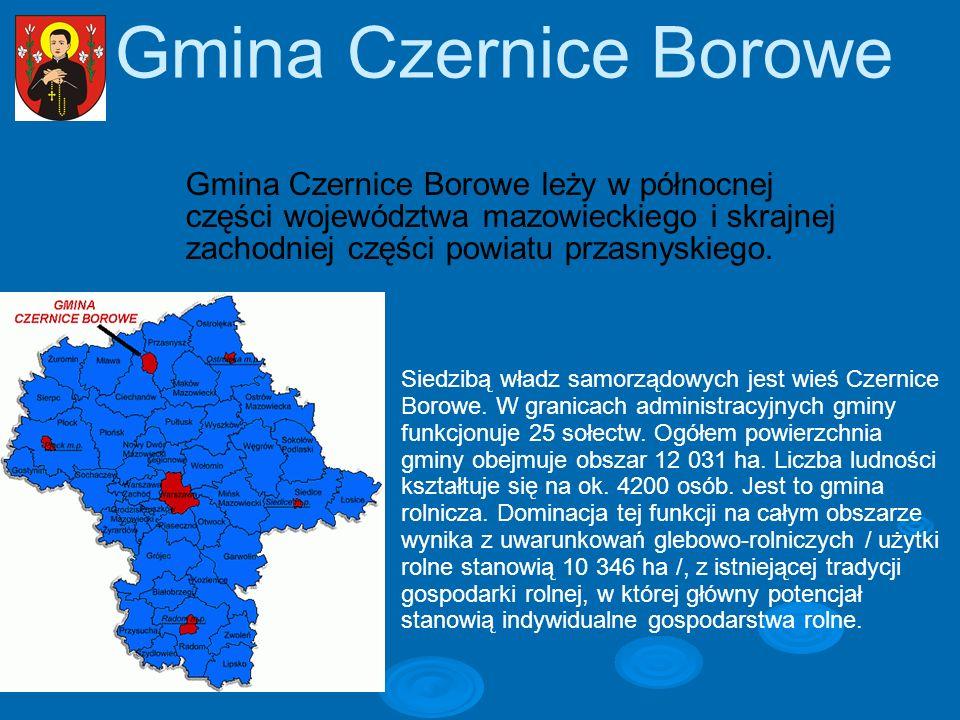 Gmina Czernice Borowe Gmina Czernice Borowe leży w północnej części województwa mazowieckiego i skrajnej zachodniej części powiatu przasnyskiego.