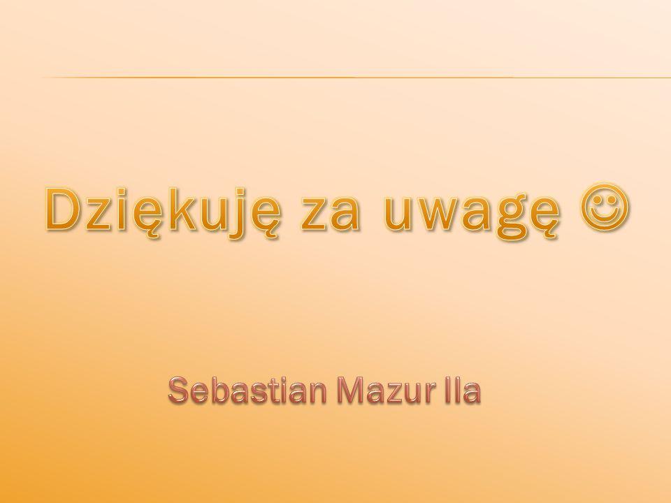 Dziękuję za uwagę  Sebastian Mazur IIa