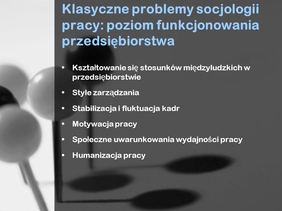 Klasyczne problemy socjologii pracy: poziom funkcjonowania przedsiębiorstwa