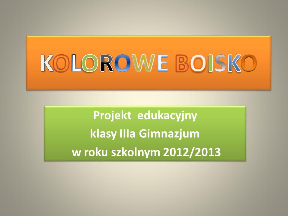 Projekt edukacyjny klasy IIIa Gimnazjum w roku szkolnym 2012/2013