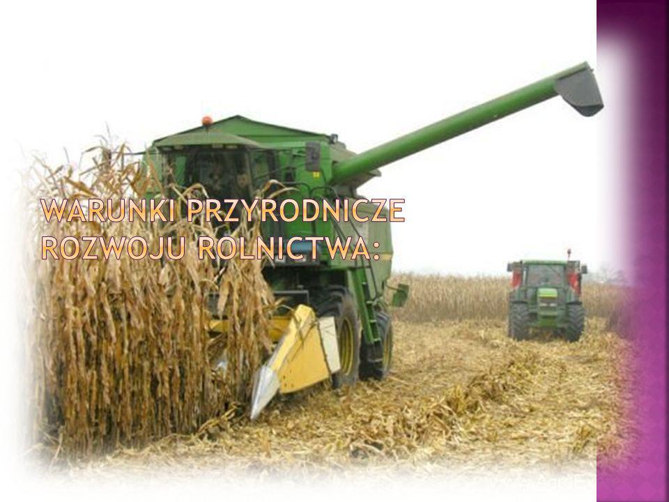 Warunki przyrodnicze rozwoju rolnictwa: