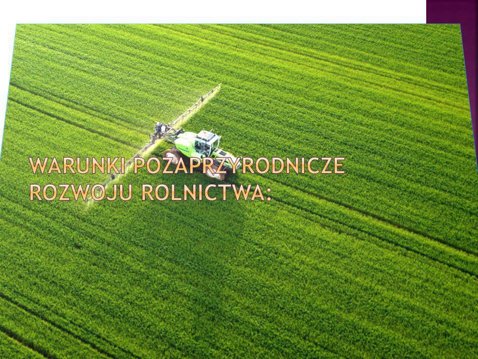 Warunki pozaprzyrodnicze rozwoju rolnictwa: