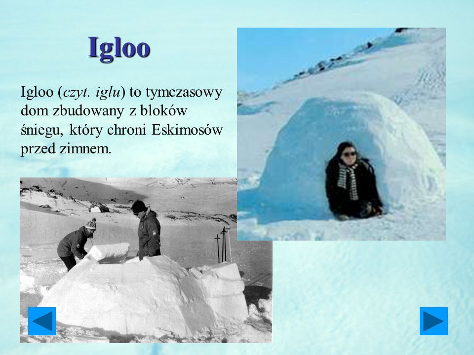 Igloo Igloo (czyt.