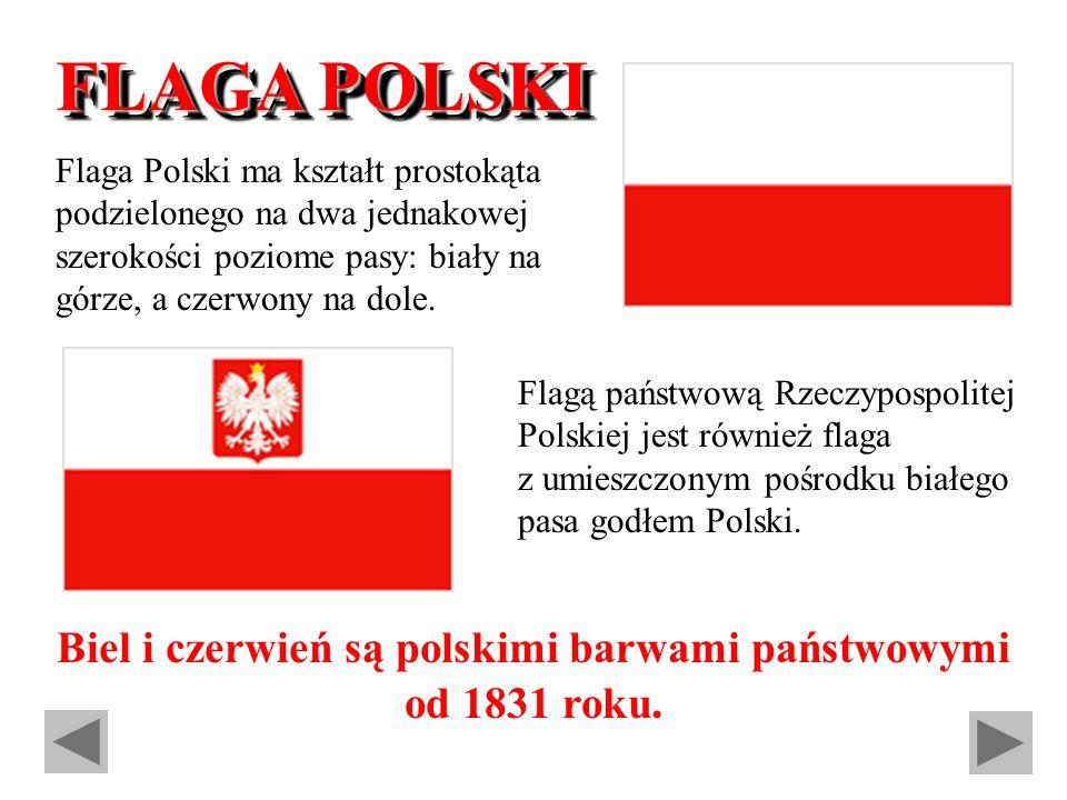 Biel i czerwień są polskimi barwami państwowymi od 1831 roku.