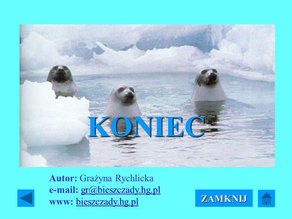 KONIEC Autor: Grażyna Rychlicka e-mail: gr@bieszczady.hg.pl www: bieszczady.hg.pl ZAMKNIJ