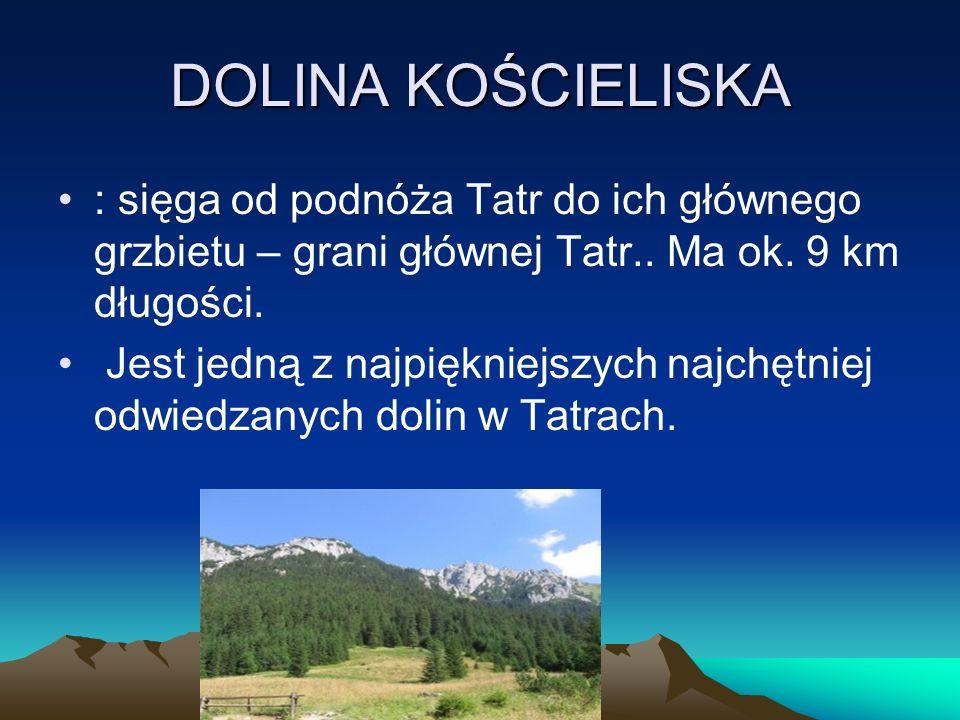 DOLINA KOŚCIELISKA : sięga od podnóża Tatr do ich głównego grzbietu – grani głównej Tatr.. Ma ok. 9 km długości.