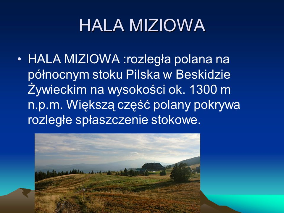 HALA MIZIOWA