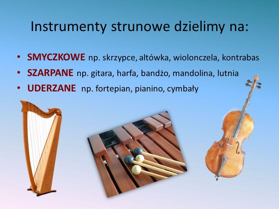Instrumenty strunowe dzielimy na: