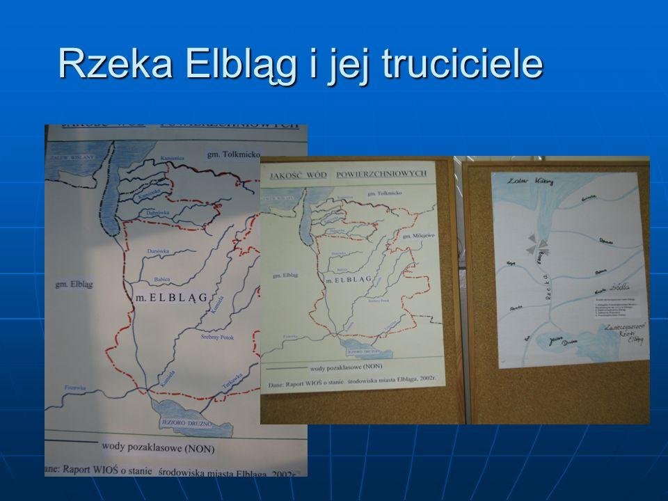 Rzeka Elbląg i jej truciciele