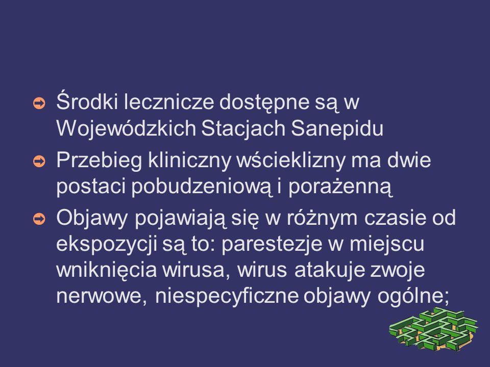 Środki lecznicze dostępne są w Wojewódzkich Stacjach Sanepidu