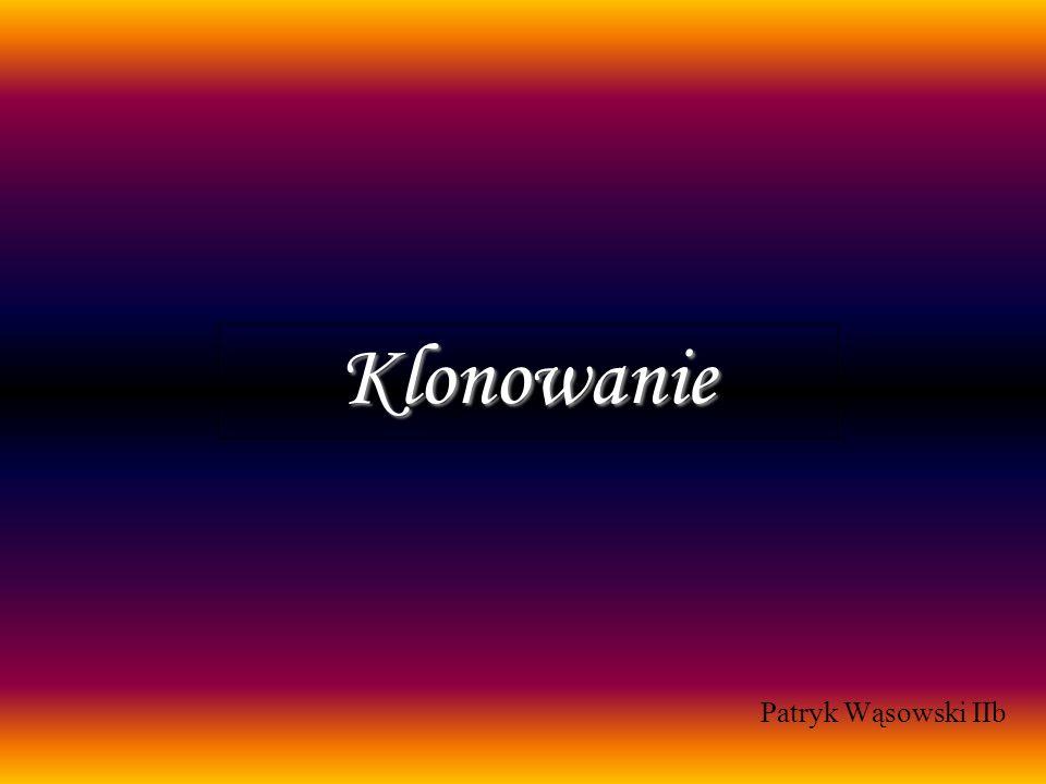 Klonowanie Patryk Wąsowski IIb