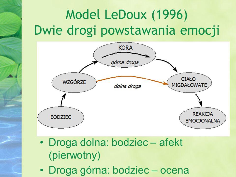 Model LeDoux (1996) Dwie drogi powstawania emocji