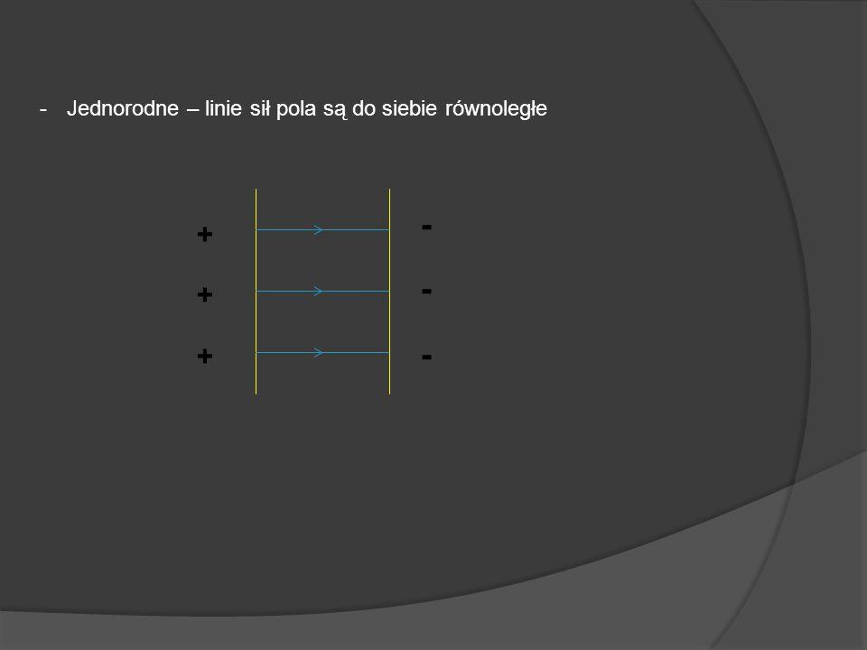 Jednorodne – linie sił pola są do siebie równoległe