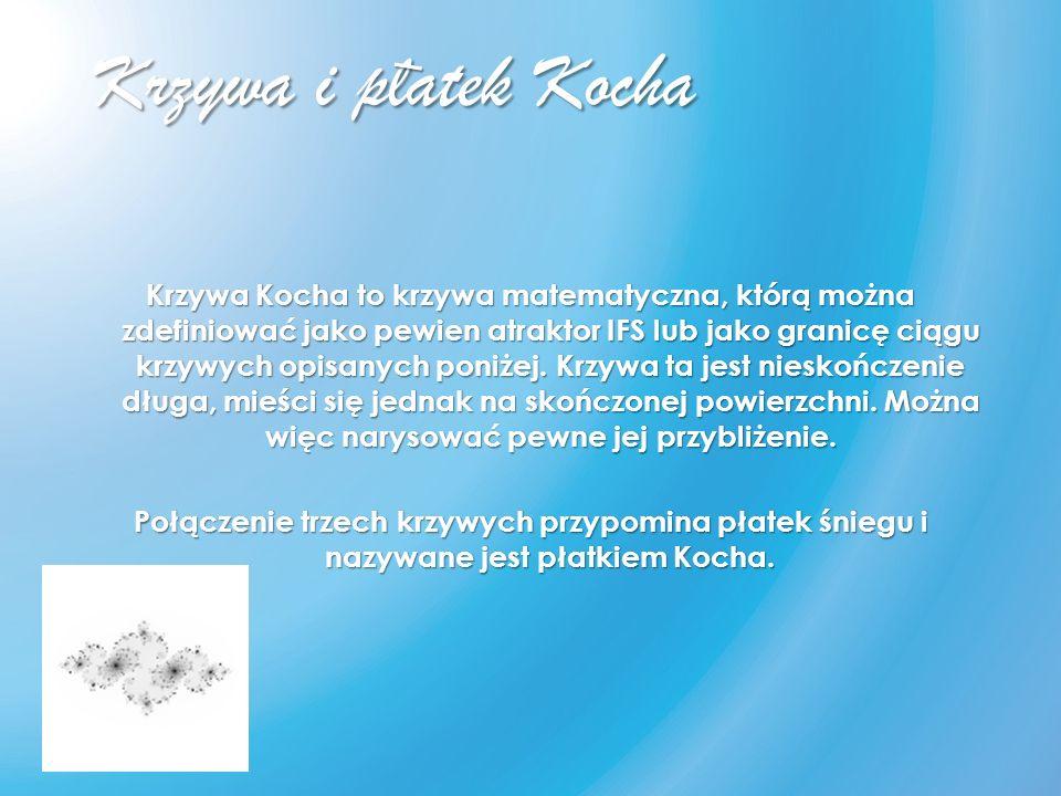 _ Krzywa i platek Kocha.