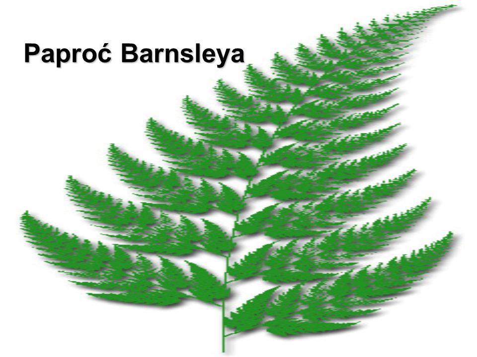 Paproć Barnsleya