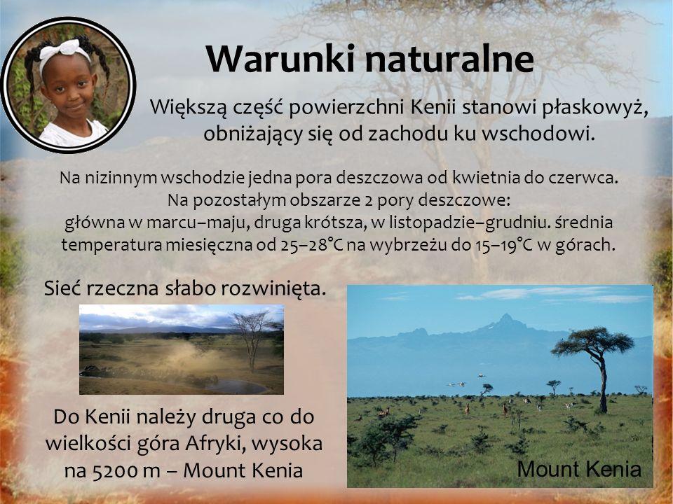 Warunki naturalne Większą część powierzchni Kenii stanowi płaskowyż, obniżający się od zachodu ku wschodowi.