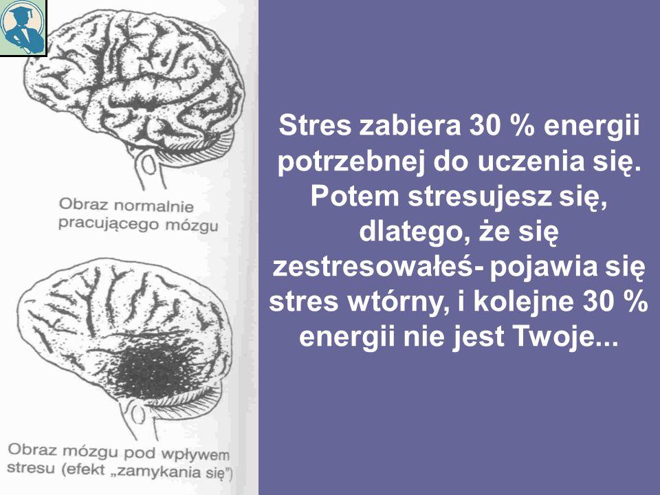 Stres zabiera 30 % energii potrzebnej do uczenia się