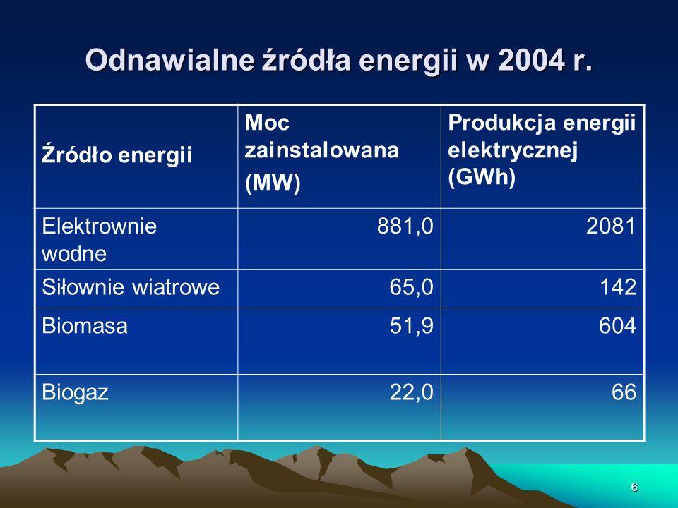Odnawialne źródła energii w 2004 r.