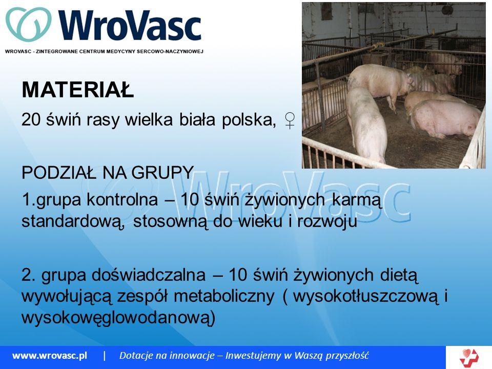 MATERIAŁ 20 świń rasy wielka biała polska, ♀ PODZIAŁ NA GRUPY