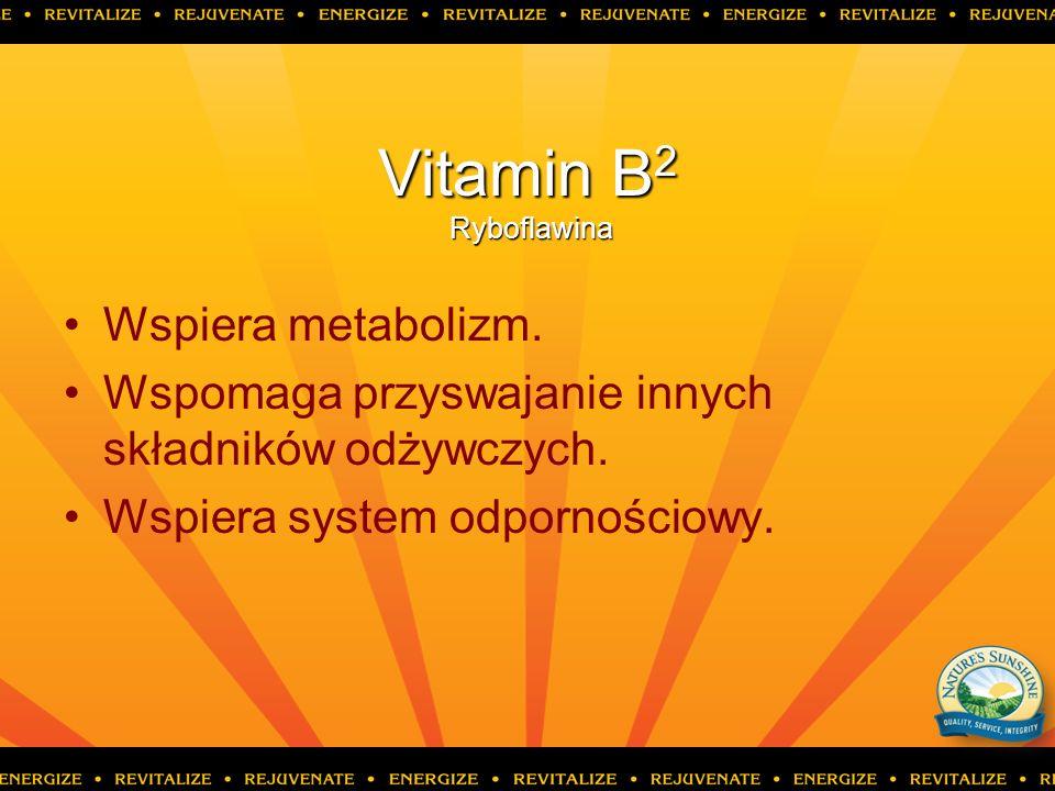 Vitamin B2 Ryboflawina Wspiera metabolizm.