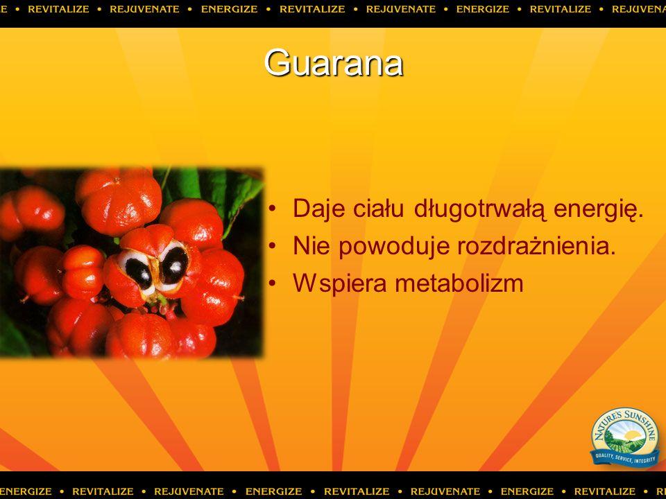 Guarana Daje ciału długotrwałą energię. Nie powoduje rozdrażnienia.