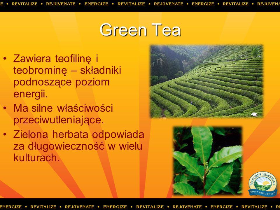 Green Tea Zawiera teofilinę i teobrominę – składniki podnoszące poziom energii. Ma silne właściwości przeciwutleniające.