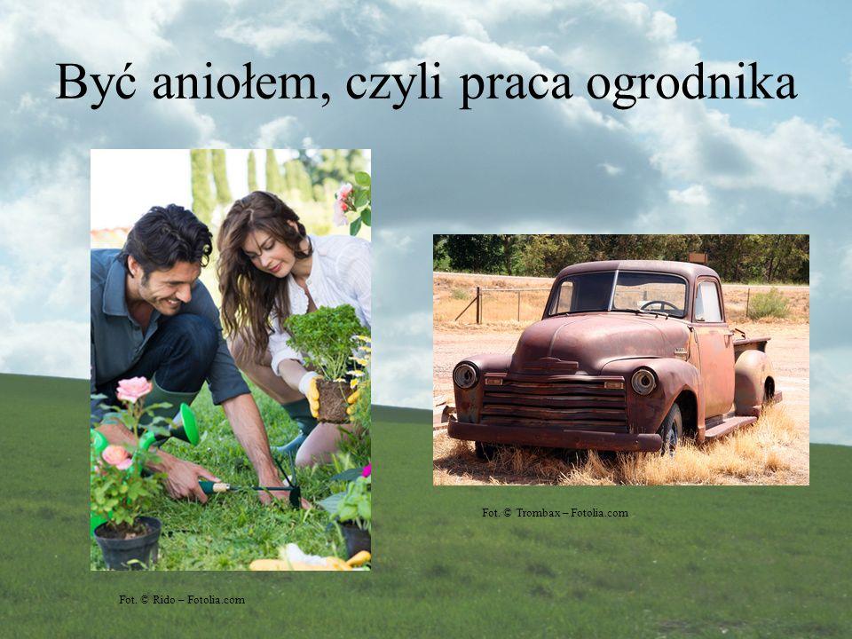 Być aniołem, czyli praca ogrodnika